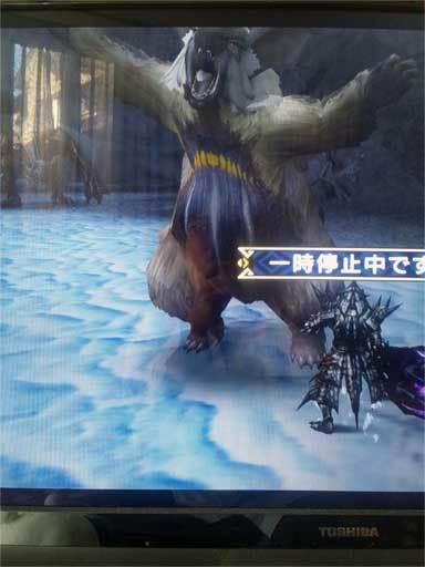 chibiusagi2.jpg